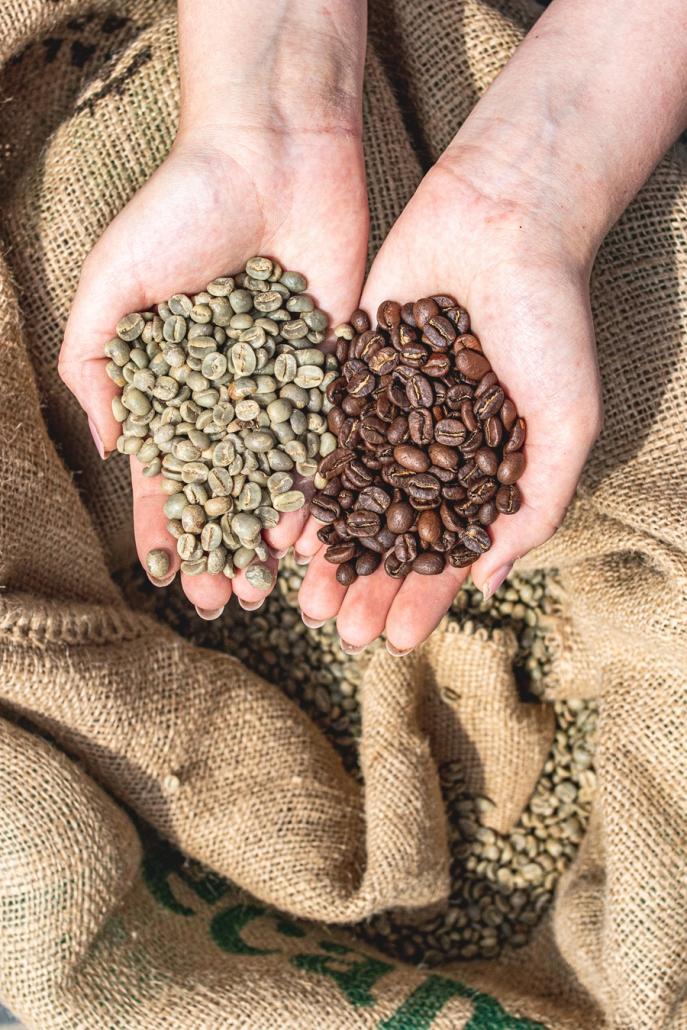 Fotograf toruń - fotografia ziaren kawy